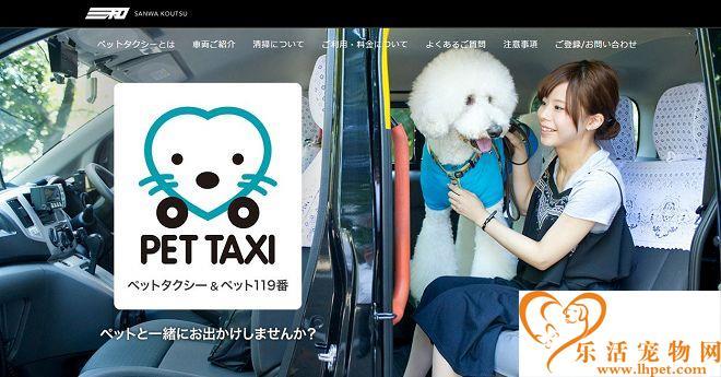 日推宠物计程车 就医美容更方便